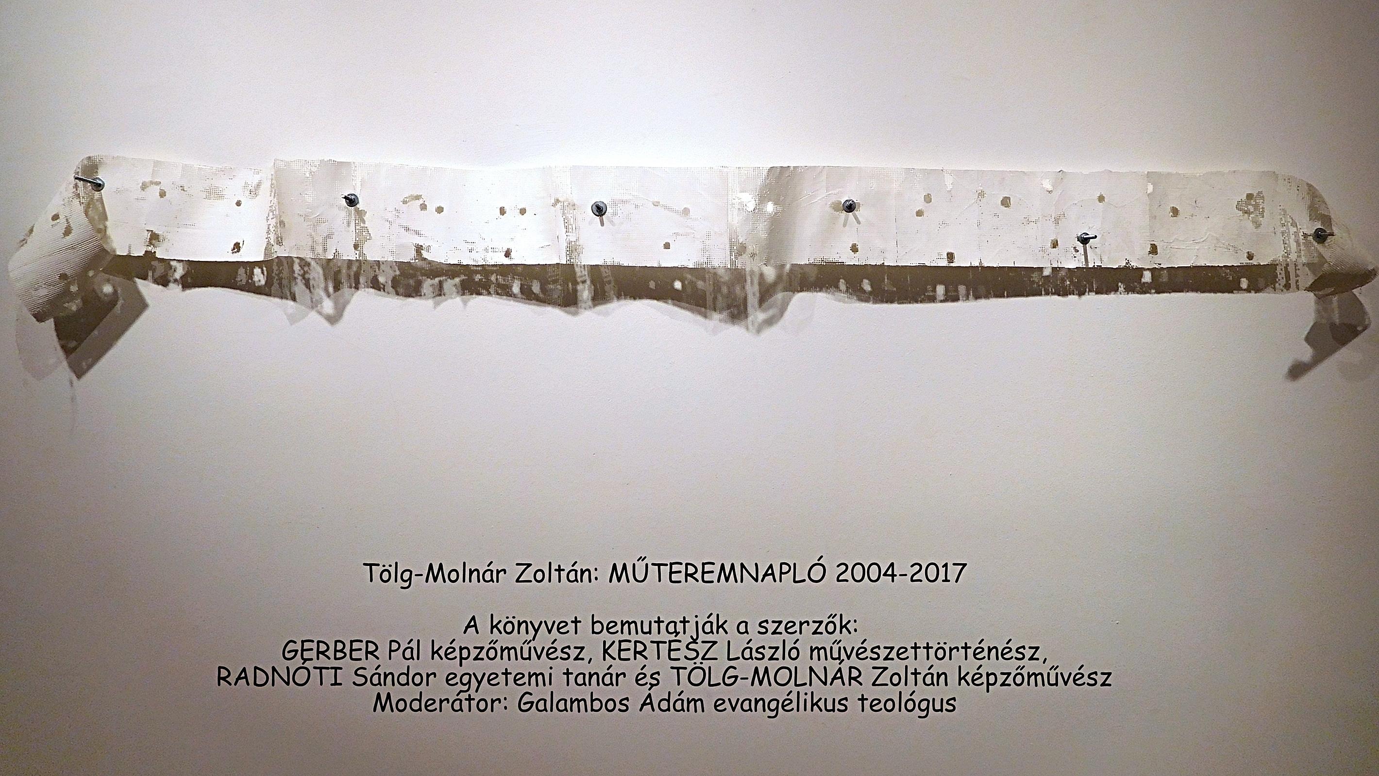 Tölg-Molnár Zoltán: MŰTEREMNAPLÓ 2004-2017