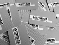 Ludwig Szabadegyetem: Művészek a művészetről
